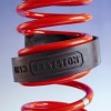 Grayston Coil Spring Assister Large Ring
