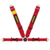 Schroth Profi II-FE ASM Harness
